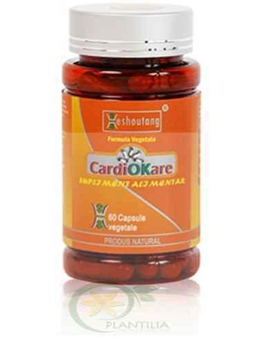 Cardiokare-Heshoutang 60 capsule DarmaPlant Cardiokare este un produs special facut pentru fluidizarea sangelui, refacerea micro