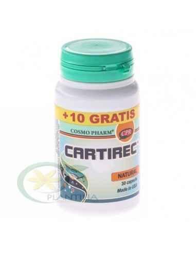 Cartirec 30+10 capsule GRATIS CosmoPharm Cartilajul de rechin stopeaza dezvoltarea vaselor sanguine de neoformatie, proces care