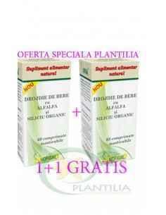 Drojdie de bere cu AlfAlfa si Siliciu Organic 60 comprimate 1+1 GRATIS Hofigal