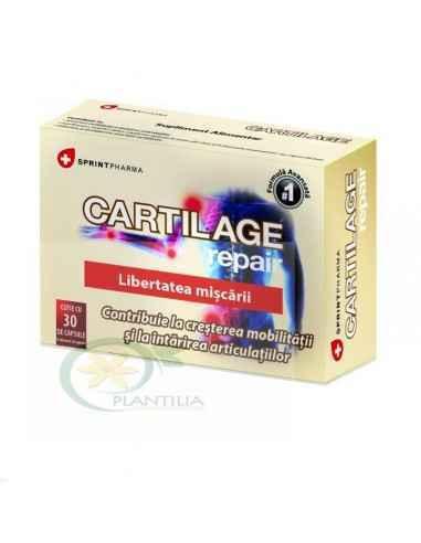 Cartilage Repair 30 capsule Sprint Pharma Cartilage Repair este un complex natural de plante, vitamine si minerale ce ajuta la i