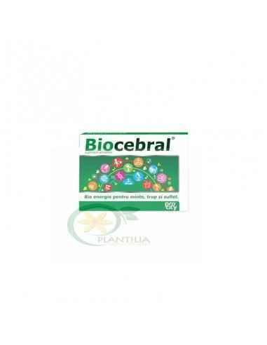 Biocebral 20 capsule Fiterman, Biocebral 20 capsule Fiterman Supliment alimentar ce ajuta la cresterea puterii de concentrare s