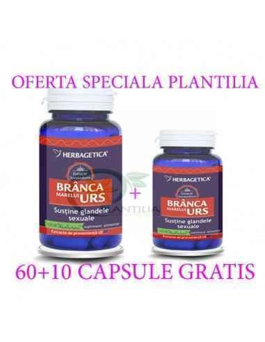 Branca Marelui Urs 60 +10 capsule GRATIS Herbagetica