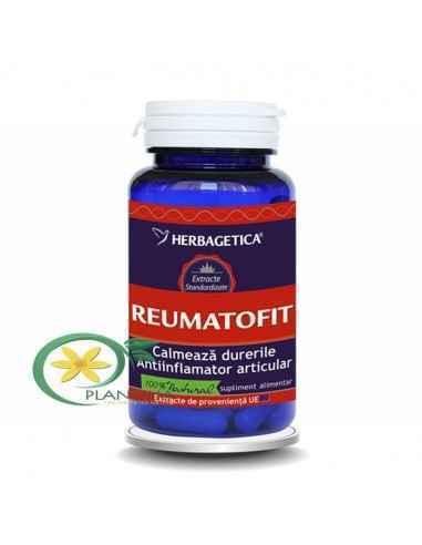 Reumatofit 60 capsule Herbagetica, Reumatofit 60 capsule Herbagetica Diminuează senzaţiile de durere, împiedică procesul degener