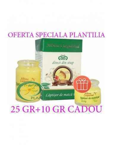 Laptisor de matca pur 25 g + 10 g GRATIS Albina Carpatina, Laptisor de matca pur 25 g + 10 g GRATIS Albina Carpatina Pachetul c