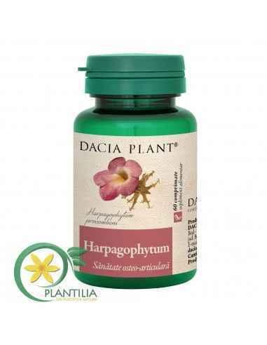 Harpagophytum 60 comprimate Dacia Plant Harpagophytum comprimate este un produs care ajută la menținerea sănătății ligamentelor,