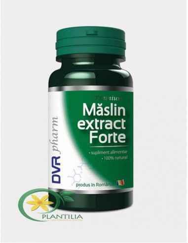 Maslin Extract Forte 60 capsule DVR Pharm Extractul de măslin reduce puternic glicemia, colesterolul, trigliceridele din sânge.