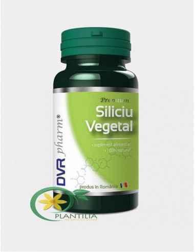 Siliciu Vegetal 60 capsule DVR Pharm, Siliciu Vegetal 60 capsule DVR Pharm Siliciul este unul dintre elementele de bază în const