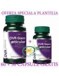 DVR-Stem Articular 60 + 30 capsule GRATUIT DVR Pharm