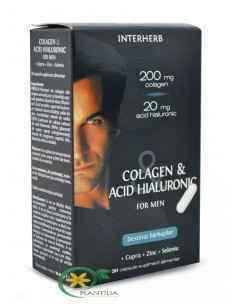 Colagen Si Acid Hialuronic pentru Barbati 30cps INTERHERB