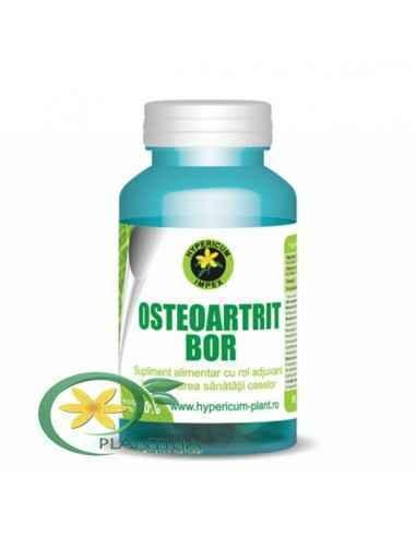 Osteoartrit Bor 60 cps Hypericum Supliment alimentar cu rol adjuvant în menținerea sănătății oaselor.