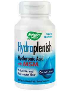 Hydraplenish Plus MSM 60 capsule Nature's Way