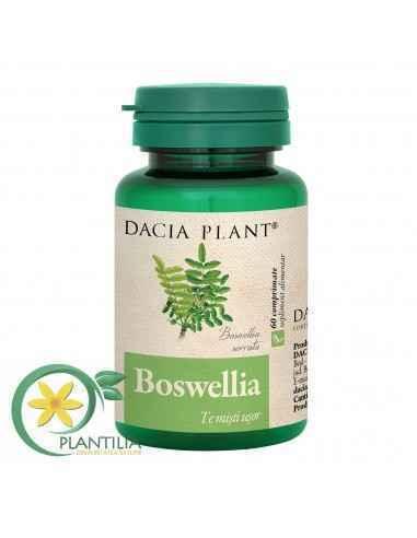 Boswellia 60 cpr Dacia Plant Boswellia comprimate care ajută la menținerea funcționalității articulațiilor și a mușchilor în lim