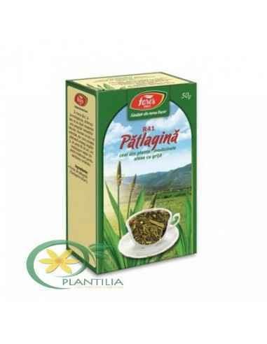 Ceai Patlagina 50g Fares Contribuie la calmarea iritaţiilor gâtului, ajutând la obţinerea confortului respirator.Contribuie la f