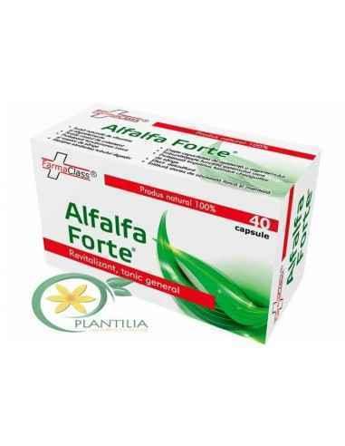 Alfalfa Forte 40cps Farmaclass Alfalfa Forte reprezinta o sursa naturala de nutrienti necesari pentru mentinerea sanatatii organ