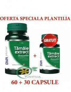 Tamaie Extract Boswellia 60cps DVR Pharm