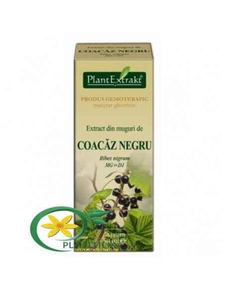 Extract din Muguri de Coacaz Negru 50 ml Plant Extrakt
