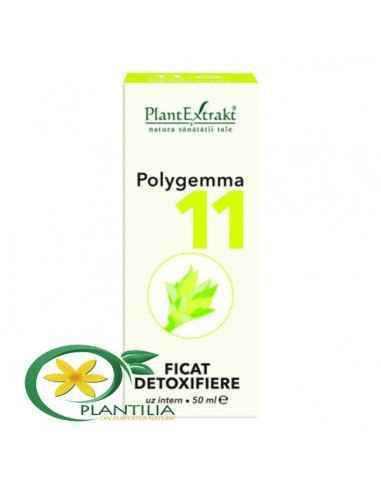 polygemma detoxifiere)