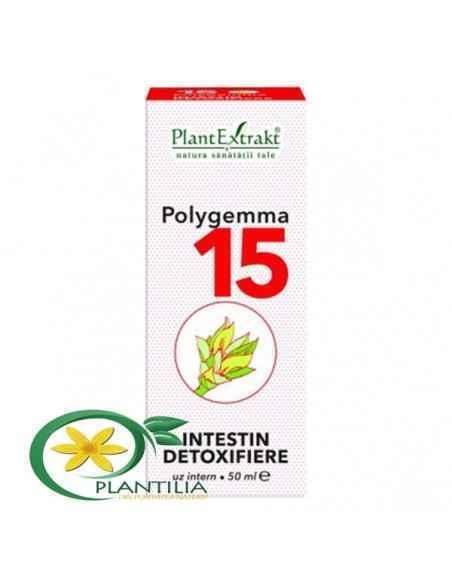 polygemma intestin