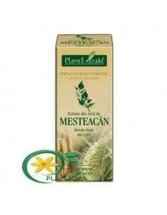 Extract din Seva de Mesteacan 50ml PlantExtrakt