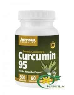 Curcumin 95 500mg Secom