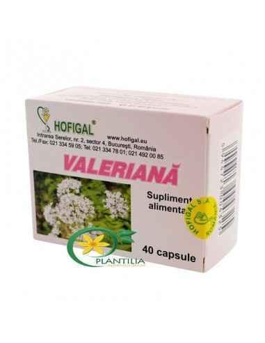 Valeriana 40cps Hofigal Are influenta pozitiva in tulburari afective si contribuie la reducerea starilor de nervozitate, iritabi