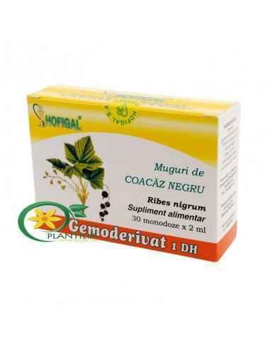 Gemoderivat Muguri de Coacaz Negru Hofigal, Gemoderivat Muguri de Coacaz Negru 30 monodoze Hofigal Produs natural cu valoare bio