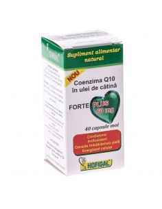 Coenzima Q10 in Ulei de catina 60mg Forte Plus 40cps Hofigal