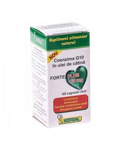 Coenzima Q10 in Ulei de catina 60mg Forte Plus 40cps Hofigal, Coenzima Q10 in Ulei de catina 60mg Forte PlusProdus natural ce
