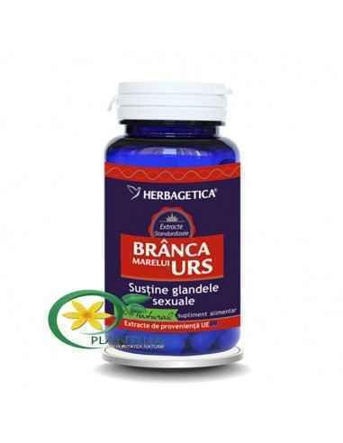 Branca Marelui Urs 30 capsule Herbagetica Brânca Marelui Urs are efecte benefice asupra fertilității masculine prin îmbunătățire