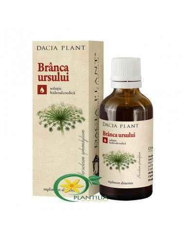 Tinctura Branca Ursului 50 ml Dacia Plant, Tinctura Branca Ursului 50 ml Dacia Plant Este vitalizant, virilizant, fertilizant cr