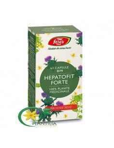 Hepatofit Forte 63 cps Fares