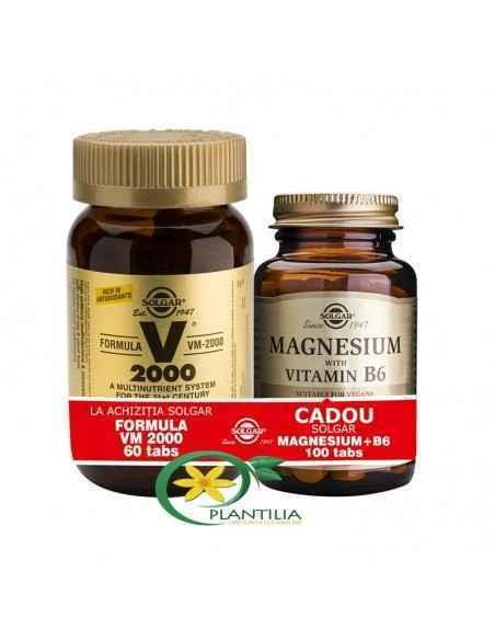 Formula VM 2000 60 tablete + Magneziu cu Vitamina B6 100 cpr Solgar