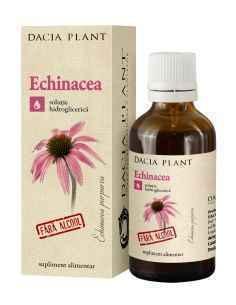 Tinctura Echinacea fara alcool 50ml Dacia Plant