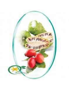 Noni + Vitamina C Naturala Rotta Natura