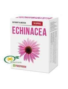 Echinacea 30cps Parapharm