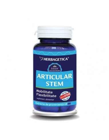 Articular Stem 60 capsule Herbagetica