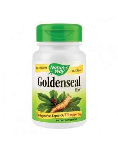 Goldenseal 570mg 30 capsule Nature's WayAntibiotic natural si protector al tuturor mucoaselor organismului.