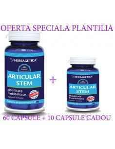 Articular Stem 60+10 capsule CADOU Herbagetica
