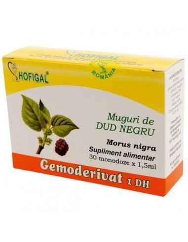 GEMODERIVAT DUD NEGRU 30MONODOZE - Hofigal Actiune benefica asupra pancreasului, metabolismului proteic, lipidic si glucidic, de