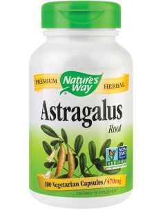 Astragalus 470mg 100 capsule Nature's Way
