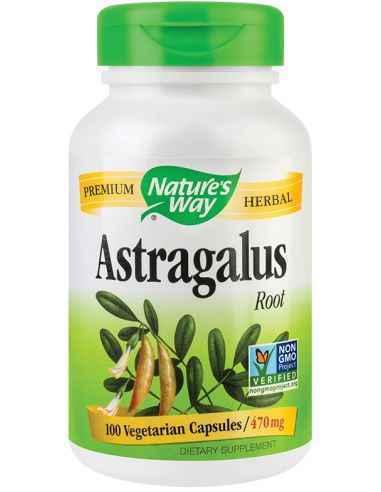 Astragalus 100 cps Secom, Astragalus 470mg 100 capsule Nature's Way Una dintre cele mai valoroase plante medicinale din lume, fo