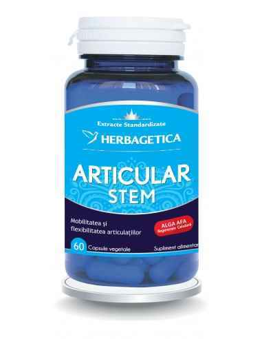Articular Stem 60 capsule Herbagetica, Articular Stem 60 capsule HerbageticaStimulează refacerea țesuturilor cartilaginoase din