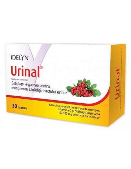 Idelyn Urinal 30 capsule Walmark