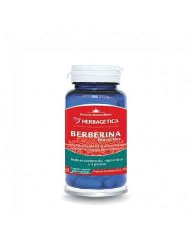 BERBERINA BIO ACTIVA 60 capsule Herbagetica Reglează colesterolul, trigliceridele și glicemia. Stimulează activitatea metabolic