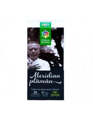 Meridian Plaman 60 cps Steaua Divina Produsul este un amestec de pulberi din 19 plante medicinale, fiind un adjuvant cu rol pro