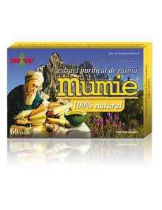 Mumie Extract Purificat de Rasina 60 tablete Damar