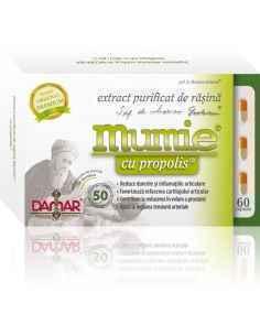 Mumie Extract Purificat de Rasina cu Propolis 60 capsule Damar