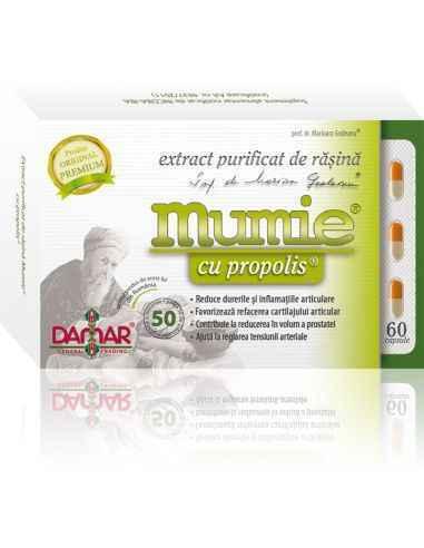 Mumie Extract Purificat de Rasina cu Propolis 60 capsule Damar, Mumie Extract Purificat de Rasina cu Propolis Un complex naural