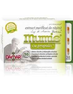 Mumie Extract Purificat de Rasina cu Propolis 30 capsule Damar