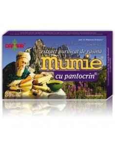 Mumie Extract Purificat de Rasina cu Pantocrin 30 tablete Damar